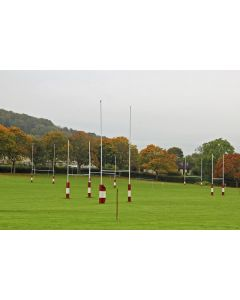 Grass Seed Amenity Mixture For Rugby Fields Pitches 175 Kilo