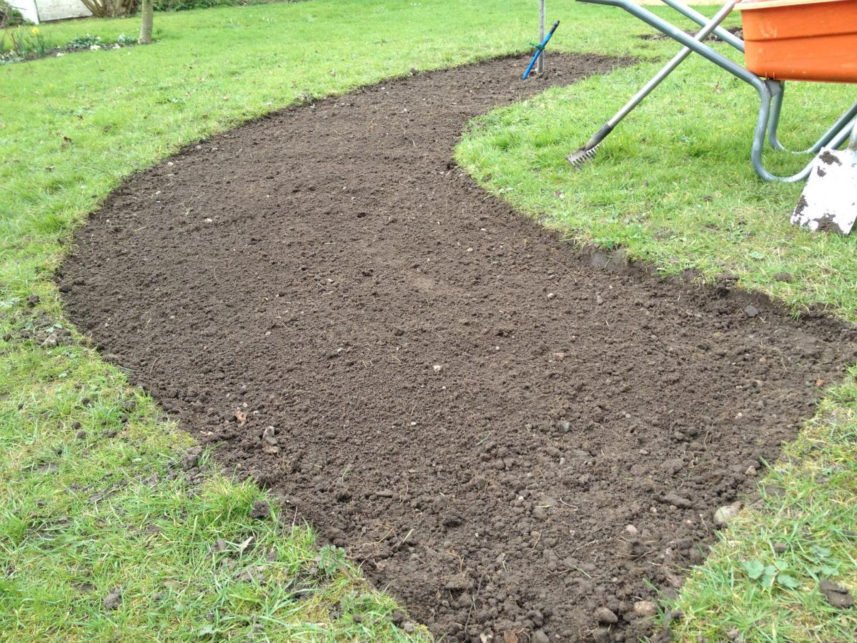 Seed Sowing Times